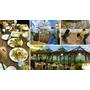 《蘆洲》顛覆泰式餐廳的印象-小島泰式料理 親子餐廳!海盜船球池、滑梯、沙坑一應俱全(內有完整菜單)