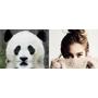 【FG編輯來解答】眼妝暈成熊貓眼了!怎麼辦??