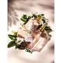 L'OCCITANE歐舒丹 格拉斯香氛系列 純真橙花邂逅柔美蘭花 展現更加優雅動人的一面