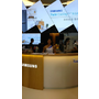 ※【體驗】SAMSUNGのTwin Cooling Plus 雙循環雙門冰箱。讓我隨意變換冰紛生活