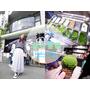 「旅遊」日本東京淺草推薦必吃❤世界第一濃抹茶冰❤壽々喜園