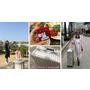 【FUN放心租】好方便的旅遊產品租借網站 來租RIMOWA行李箱。Casio自拍神器。日本/韓國/菲律賓/長灘wifi機
