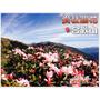 【Livia♥旅遊】來去合歡山賞花♥高山杜鵑花盛開中