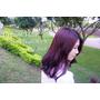 ▌頭髮 ▌ 永和樂華 Dream Hair-Nico♥遠近高低各不同~超夢幻紅x深紫漸層染!