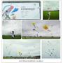 屏東國際風箏節~看著美麗的風箏隨風飛翔,箏奇鬥豔,一起Fun風箏