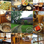 花蓮餐廳推薦. 禾田野餐廳▋花蓮壽豐~充滿日式風味懷舊風情老房子咖啡廳