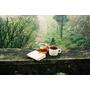 告別瓶裝飲料♪改變對茶的印象!日妞新歡「南非有機茶」