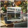 【美食】日式野菜定食感美味早午餐 * 台中南屯 Solar Table 於光