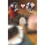 【婚姻大小事】戀愛話語 Our Story * 一步一腳印的相惜