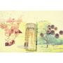 Aperio艾貝歐胺基酸彈力潔顏慕斯-來自加州的天然保養品牌
