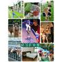 [苗栗 住宿]崎頂新樂園(文末贈獎)~夏季玩水/馬戲表演/動物園/烤肉/露營/住宿~最純真的童趣