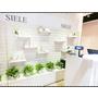 【Siele&Roof Garden】雙品牌進駐微風松高新開櫃 主打青少女到輕熟女肌膚保養 擁有好膚質再也不是難事