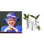 英國女皇伊莉莎白二世也愛不釋手的護手霜!限量推出三款植萃香氛