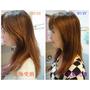【頭髮清潔】改善秀髮問題, 洗出滑順質感髮,【設計師品牌】HB毛鱗修護洗潤髮系列~