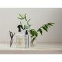 BONDI WASH 澳洲純天然居家抗菌清潔品牌 8 號系列香氛:茴香香桃木&香草系列 限量上市