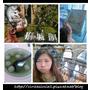 【▎台南.虱目魚主題館 ▎一本書一隻魚。好吃好拍好療愈的小景點分享】