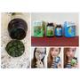【保養】早藍晚綠健康有力小小一粒大大滿足 * 遠東生技 特級藍藻錠+特級綠藻錠