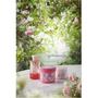 香草集「玫瑰蜜語香氛保養系列」 感受幸福舒緩的天然玫瑰香氣