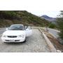 [紐西蘭]租車與駕駛注意事項(取車前/上路前的準備)