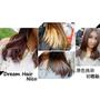 ▌頭髮 ▌Dream Hair-Nico 漂色初體驗♥想要迷幻特殊髮色..漂色是必經之路啊!