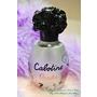 ▎香氛 ▎好奇我用甚麼香水嗎?我用Gres Cabotine 卡布丁瑰麗佳人淡香水隨時保持迷人的香氣!