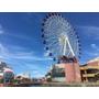 2016.7月-日本的夏威夷-藍天❤白雲❤清澈的海水❤沖繩會上癮我又來了-Day4美國村的旋轉壽司市場❤又是海邊❤AEON❤小樹40歲啦!!!!