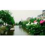 漫步Amsterdam,一個美好的運河城市