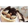 """巧克力控一定失心瘋的凡內莎烘焙工作室""""洛可可王朝"""",濃郁卻不死甜~會上癮的榛果巧克力嘎茲!"""