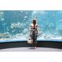 不小心散步到沖繩 / 10#沖繩美麗海水族館