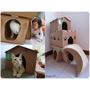 貓咪|貓咪們的移動城堡!喵屋Meow Store用心打造無害環境,貓屋DIY