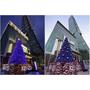 KENZO全球獨家首座聖誕樹就在台灣信義區,絕美登場!