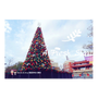 《2016新竹聖誕節活動》新竹感恩季x新竹耶誕城開跑囉。許心願做公益。城市光廊。聖誕點燈。感恩晚會︱