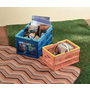 [日本雜貨] Piknikule 匹克尼庫 大尺寸便利摺疊籃 野餐籃 露營籃