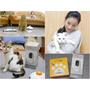 寵物|Pawbo+ 三合一遠距互動寵物攝影機、Pawbo Catch讓貓咪超瘋狂