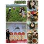 [玩 花蓮]亮點茶莊台灣好茶(附影片)~茶莊也能這麼好玩!在地作物/農民拜訪(抽獎)