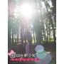 【台中】景點 九天森林 黑色森林充滿著一股神秘氛圍 婚紗攝影外拍秘境 逆光拍攝 唯美到極點 近九天玄女廟(陣頭拍攝場景)