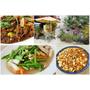 『南投。埔里』金膳坊庭園蔬食小炒║田中央的素食美食,新鮮天然食材、無加工素料、吃得健康又無負擔~