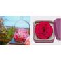 一朵要價NT2580!agnès b.奢華推出玫瑰情人節花盒