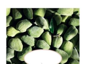 L'OCCITANE杏仁系列3月10日全新上市