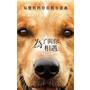 [ 電影 ] 【為了與你相遇】就算不養狗也該看的電影