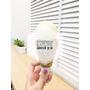 【美食】台南孔廟不再只是古蹟,Amour愛慕義式冰淇淋,繽紛可愛的讓人拍不停