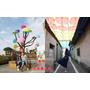 【彰化】和美景點 卡里善之樹 Rainbow House 為愛撐傘 七彩雨傘巷超繽紛 IG熱門景點