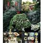 犬鳴山溫泉.み奈美亭溫泉旅館▋日本大阪泉州~離大阪機場最近的溫泉鄉,犬鳴山往七寶瀧寺的健行步道神聖莊嚴也是修行的好地方