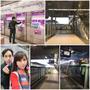 2017.03月-夫妻兩人國外輕旅行♥ 曼谷♥ 輕鬆自在♥ 好甜蜜-Day 1
