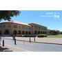 北加州隨意行。第一站 ► 史丹佛大學 Stanford University 參觀簡介