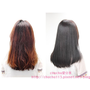 [角蛋白護髮|髮品] Screen頂級角蛋白髮療系列♥超有感護髮,讓我的爛髮起死回生啊!