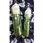 【❤保養】日本Santa Marche-為肌膚溫和去除老廢角質『兒茶素活顏透亮去角質凝膠』2in1綠茶洗卸合一『兒茶素深層洗卸凝膠』
