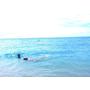 ★旅行★菲律賓宿霧島 薄荷島七天七夜自助不用15000~菲律賓機票/換匯/簽證/網路 第一次東南亞就上手