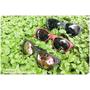 【配件】DOUX Eyewear - MIT台灣墨鏡品牌 ~ 播放自我時尚,玩轉個人品味(文末抽獎)