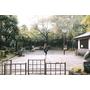 雜司谷市集#都電荒川線東京下町散策